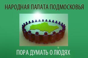 НПП: Свободно выражать законные интересы Фото: Народная палата Подмосковья